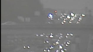 Traffic backs up on I-24 West due to a crash near Hickory Hollow Pkwy Monday, Nov. 23.