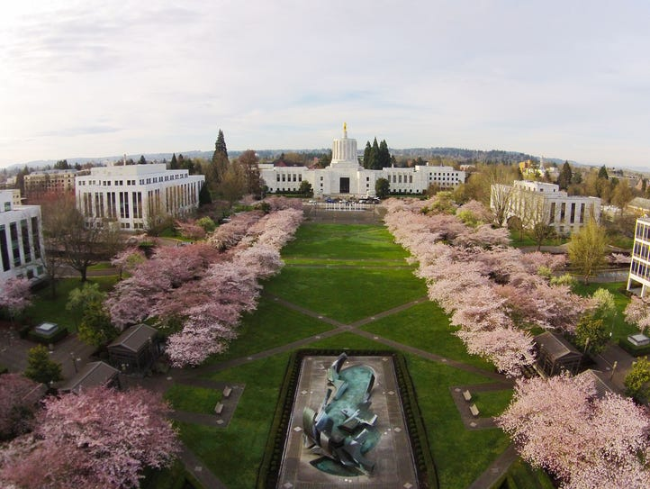 Best easy hikes in Salem and Kezier. No. 5 — Oregon State Capitol State Park.
