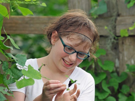 Looking at a caterpillar in her butterfly garden that the youth group from First Baptist Melbourne helped create in the family's backyard. 13 year old Shannon Silliman, of Palm Bay, is battling melanoma skin cancer.