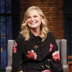 Amy Poehler pleads with Daniel Day-Lewis not to retire: 'We need you'