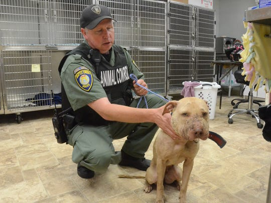 Animal Control Officer Mike Ehart with Daisy, one of