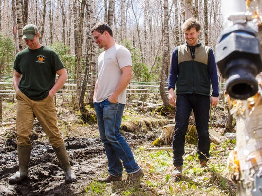 Brian Heffernan of the Heffernan Family Sugarworks in Starksboro, left, visits a birch sugarbush with Nikita Salmon, center, and Chas Smith of Sap!, a Middlebury-based maple beverage company, on Thursday, April 28, 2017.  Sap! makes birch sparkling water made from sap sourced in part from Heffernan's birches.