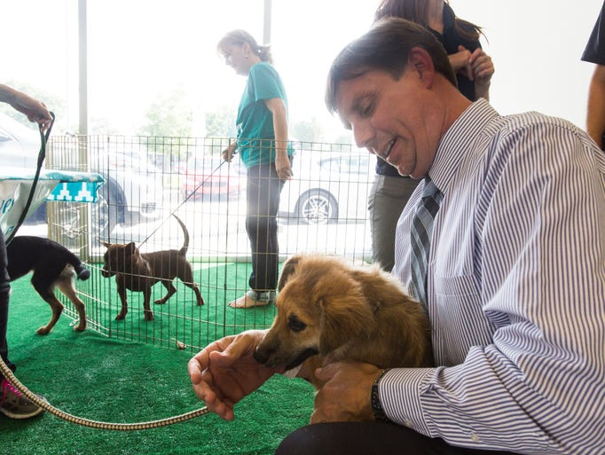 Moss Bmw Lafayette >> Drive for a Cause fundraiser to help Acadiana Animal Aid at Moss BMW