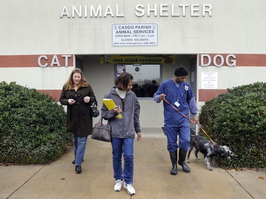 FILE PHOTO - Kristy O'Neill, LaTonya Jackson and Kennel