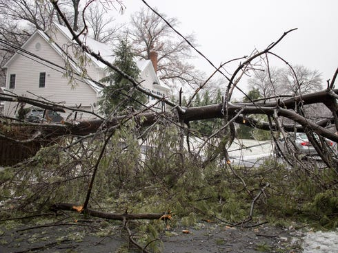 A power line is tangled in a downed tree Monday in Vienna, Va.