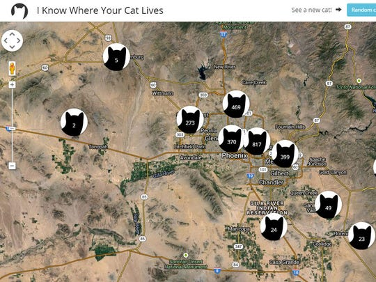 A map shows cat photos uploaded in the metro Phoenix area.