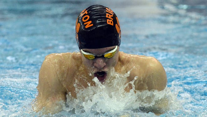 Drew Panzl broke three long-standing Brighton swimming records last season.