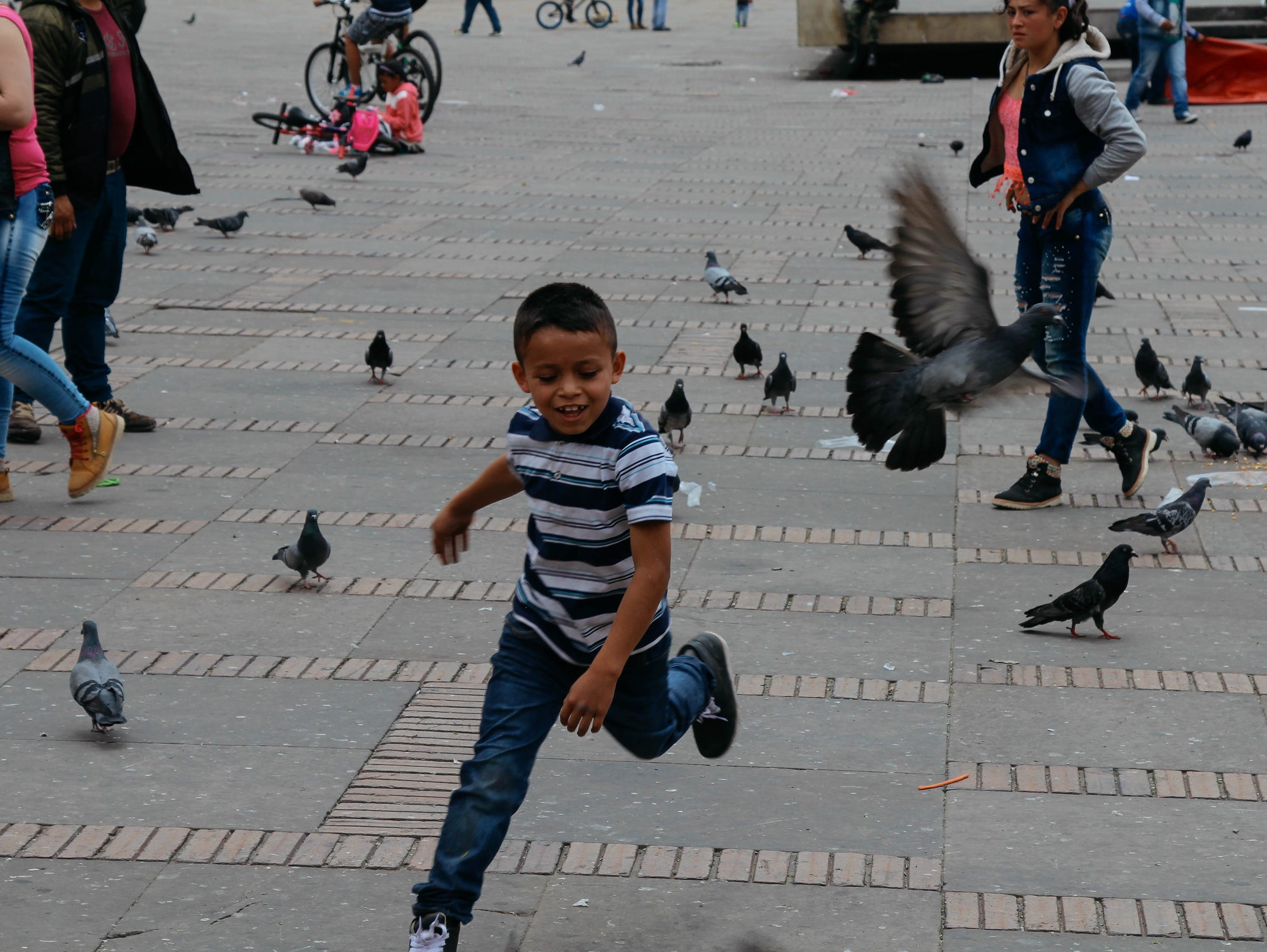 A young boy chases a pigeon in Bogotá's Plaza Bolívar.