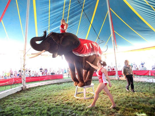 Mariska Liebel rides the family's elephant, Tiny, as sister Katalina and brother Tommy take the elephant through her tricks as part of the Lebling Brothers Family Circus performing at the annual Morris Canal Day Festival on Saturday.