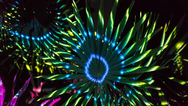 """The Klip Collective made a big splash with """"NIghtscape"""" at the Longwood Gardens outside Philadelphia in 2015."""