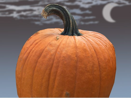 Select a large pumpkin with a flat surface.