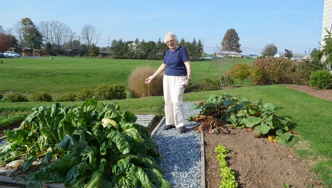 Doris Yochum stands between the Swiss Chard and the Rhubarb at the vegetable plot at StoneRidge Poplar Run, a StoneRidge Retirement Living facility in Myerstown.