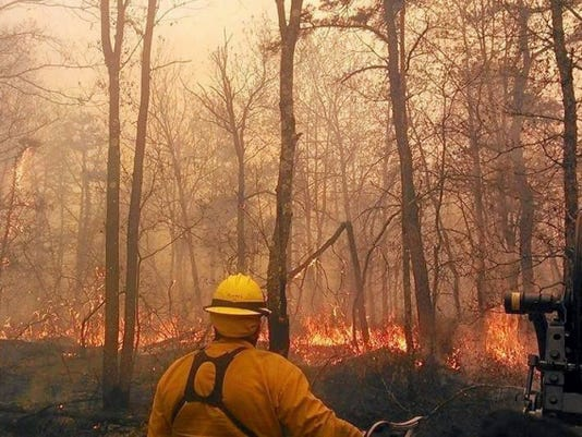Pennsylvania Game Commission food and cover crews use controlled fires to help promote oak regeneration on State Game Lands.