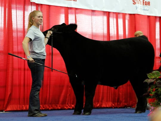 Lauren May of Mineral Point, in Iowa County, brings her Grand Champion Steer on the stage to start bidding at the Governor's Blue Ribbon Livestock Auction on Aug. 9 at the Wisconsin State Fair.