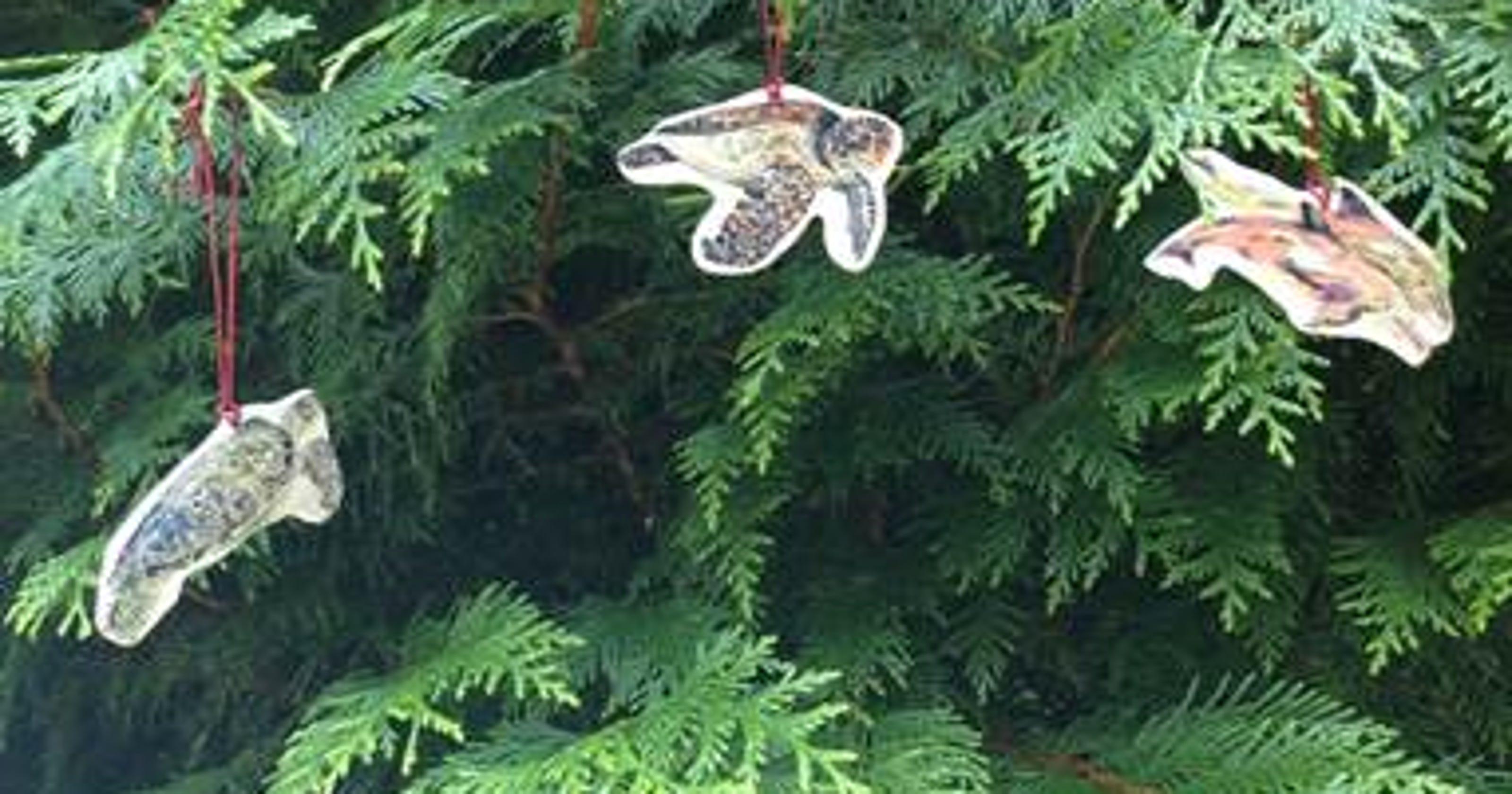 Artist Christmas Ornaments.Artist Launches Kickstarter Campaign For Coastal Christmas
