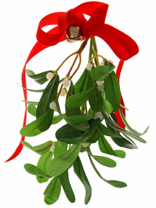 mistletoe stock image.jpg