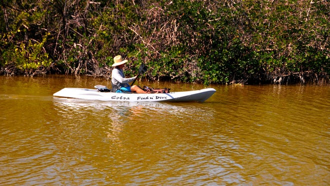Jeremy Edgar of Fin Expeditions heads out with a tour in the Banana River, near Ramp Road Park in Cocoa Beach. The lagoon has been plagued recently with brown tide algae.