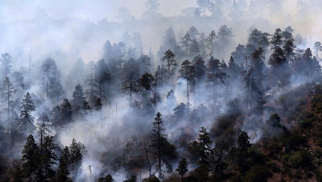 Smoke rises from a stand of trees smoldering from the 416 Fire west of U.S. Highway 550 on Friday, June 8, 2018, near Hermosa, Colo.