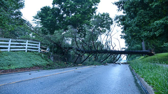 A large pine tree fell across Route 82 in Hiram Village Sunday evening in the wake of strong thunderstorms. The tree blocked traffic in both directions. ODOT was on the scene surveting the damage just before sunset. No one was injured.