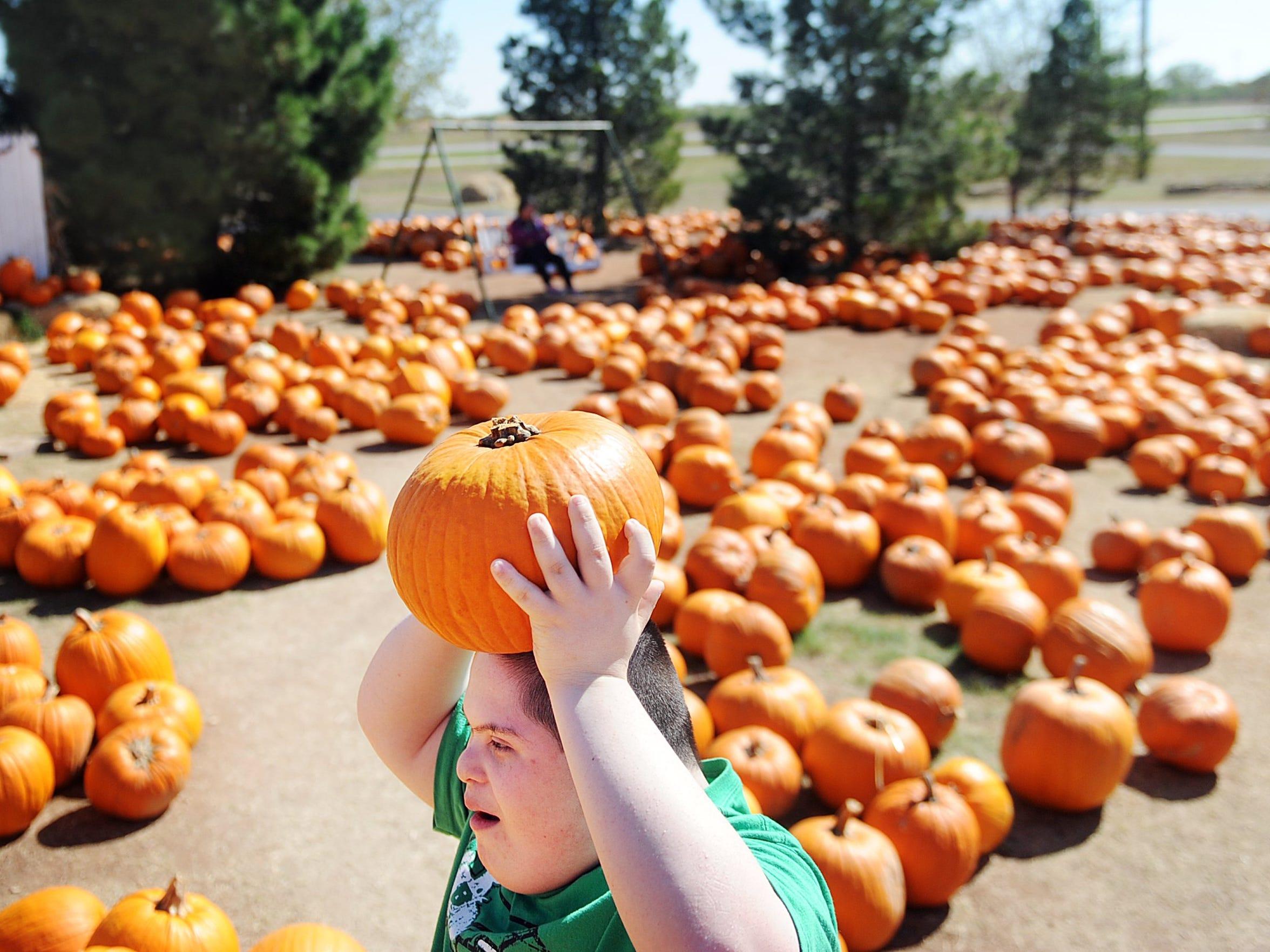 Jesus Arellano,13, totes a pumpkin at the Disability