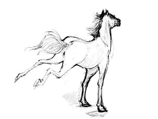 lavinia_Horse.JPG