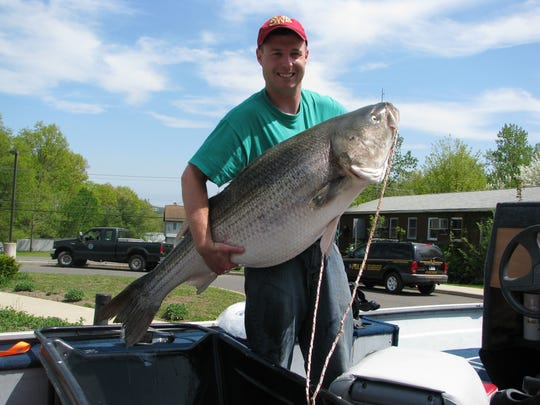Eric Lester, 32, caught a 60-pound bass on May 14, breaking the Hudson River record.