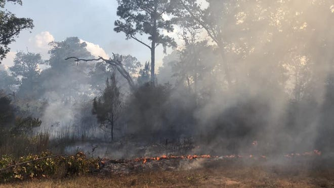 A wildfire in August 2020 burns in Bastrop State Park in Bastrop. Bastrop County began the process last week of updating the county's hazard mitigation plan, which includes mitigation planning for 16 hazards, including wildfires.