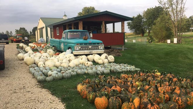 Straddle Creek Gardens, 25269 Locust Road, Lanark, will host its fall festival from 10 a.m. to 5 p.m. Saturday and Sunday, Oct. 3-4.