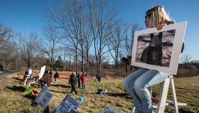 Protester Beverly Budz of Vernon holds a photo of Oliver, a bear killed in a previous bear hunt, at the states annual black bear hunt, at the Whittingham Wildlife Management Area in Newton, December 7, 2015.