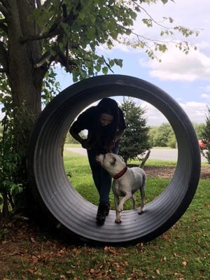 Megan Keefe and Ace practice for the Ruff Mudder Canine Obstacle Challenge to be held at Marty's Place Senior Dog Sanctuary in Upper Freehold on Sunday, October 22, 2017.
