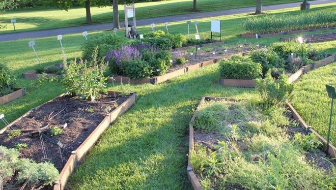 Trial gardens are shown as they were getting started in Spring. The photo was taken by Master Gardener Phil Peters.