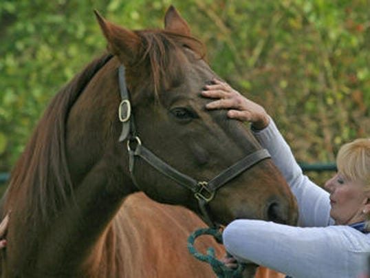 Nj Horse Farm Under Watch For Signs Of Ehv Infection