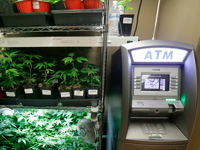 An automated cash machine is set up next to a rack of marijuana clone plants used to grow medical marijuana at The Joint, a medical marijuana cooperative, on Oct. 16 in Seattle. Washington is the second state to adopt rules for the recreational sale of marijuana.