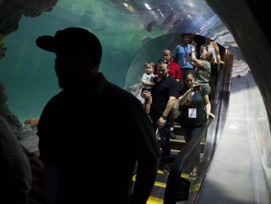 OdySea Aquarium opening