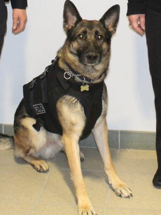 636596660175939370-Eli-Troy-police-canine..jpg