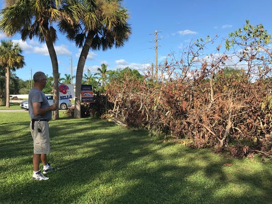 Debris from Hurricane Irma sits at the edge of Mike