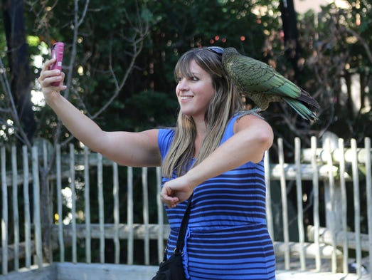 Nedra McDaniel takes her photo with a kea at Friday's opening of the new Kea Free Flight Aviary exhibit at the Cincinnati Zoo and Botanical Garden.