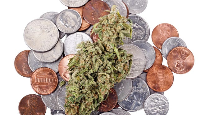Hydroponic cannabis bud resting on a pile of coins.