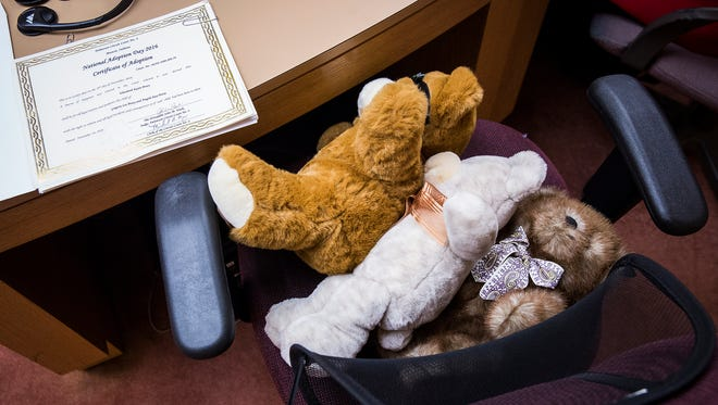 Teddy bears are positioned on a chair in Circuit Court 4 in preparation for National Adoption Day.