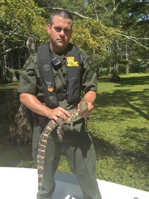 Byrd graduate Mike Cook holds an alligator. Cook recently graduated from the LDWF academy.