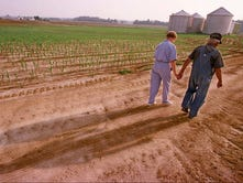 Depressed farm economy has dairy farmers on edge
