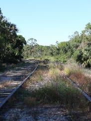 A view of a segment of the CSX Transportation railroad