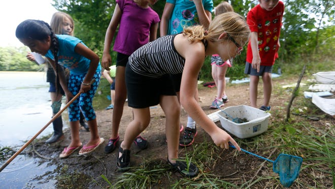 In a recent summer, students at Cowden Elementary search for critters with a net at the Watershed Center at Valley Water Mill during a summer program.
