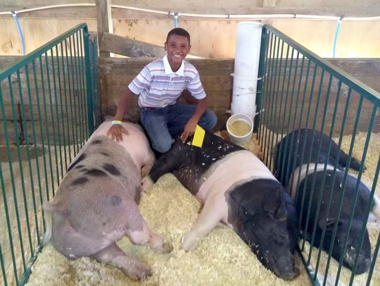 Braylen Naves, 11, of Grand Blanc, poses with his pigs