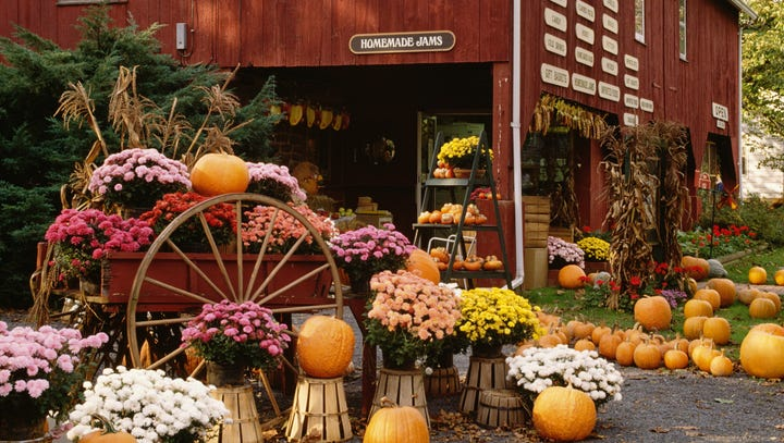 6 ways to make the most of the fall season for your small business