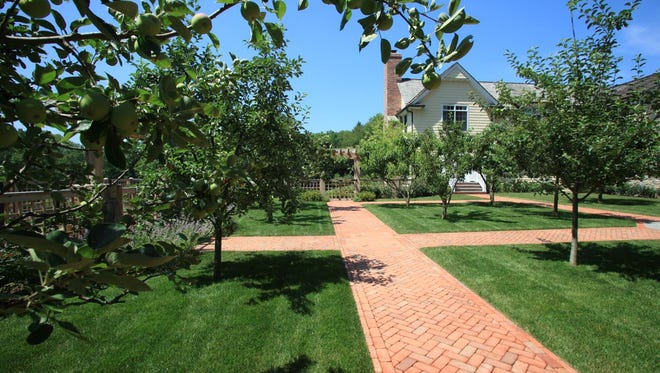 Planting and care of fruit trees happens in January and February while the trees are still dormant.