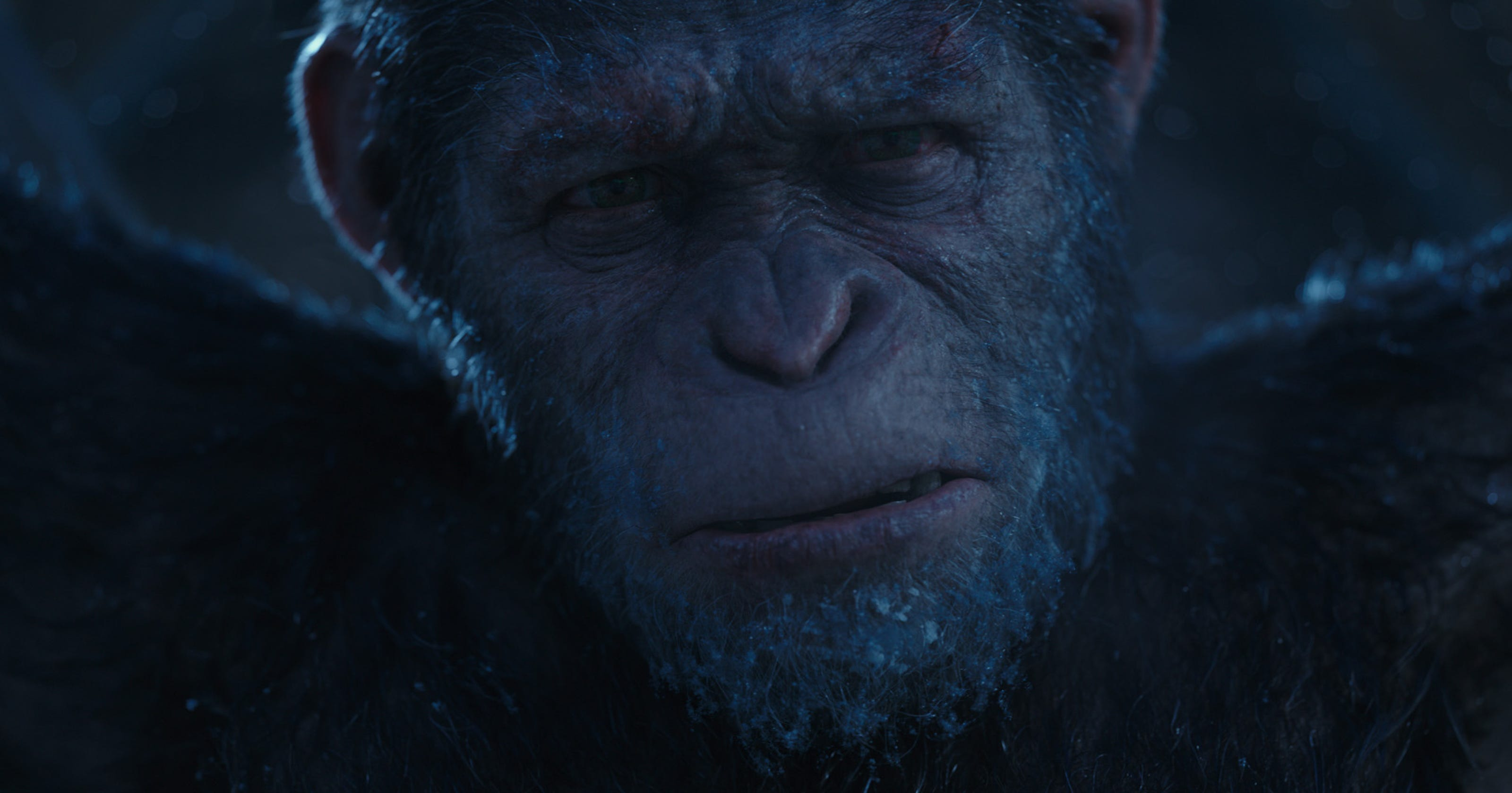 do they have subtitles in dawn of the planet of the apes