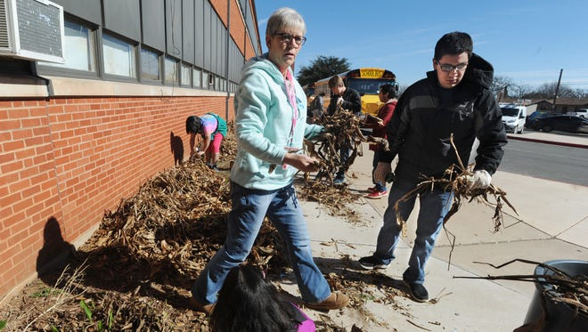 Teacher Jill McClellan, center, and students from her Community Connections class, clean up dead stalks and prepare to move some flower bulbs from the front of the school to a different location at Abilene High School Thursday, Jan. 26, 2017.