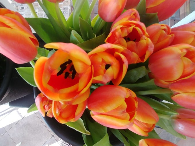Tulips are among the flowers featured in a bouquet