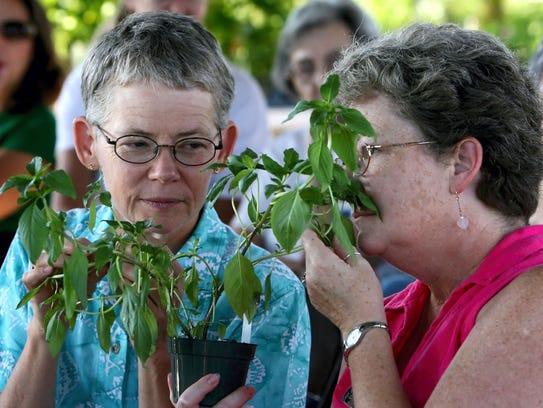 The South Texas Botanical Gardens & Nature Center,